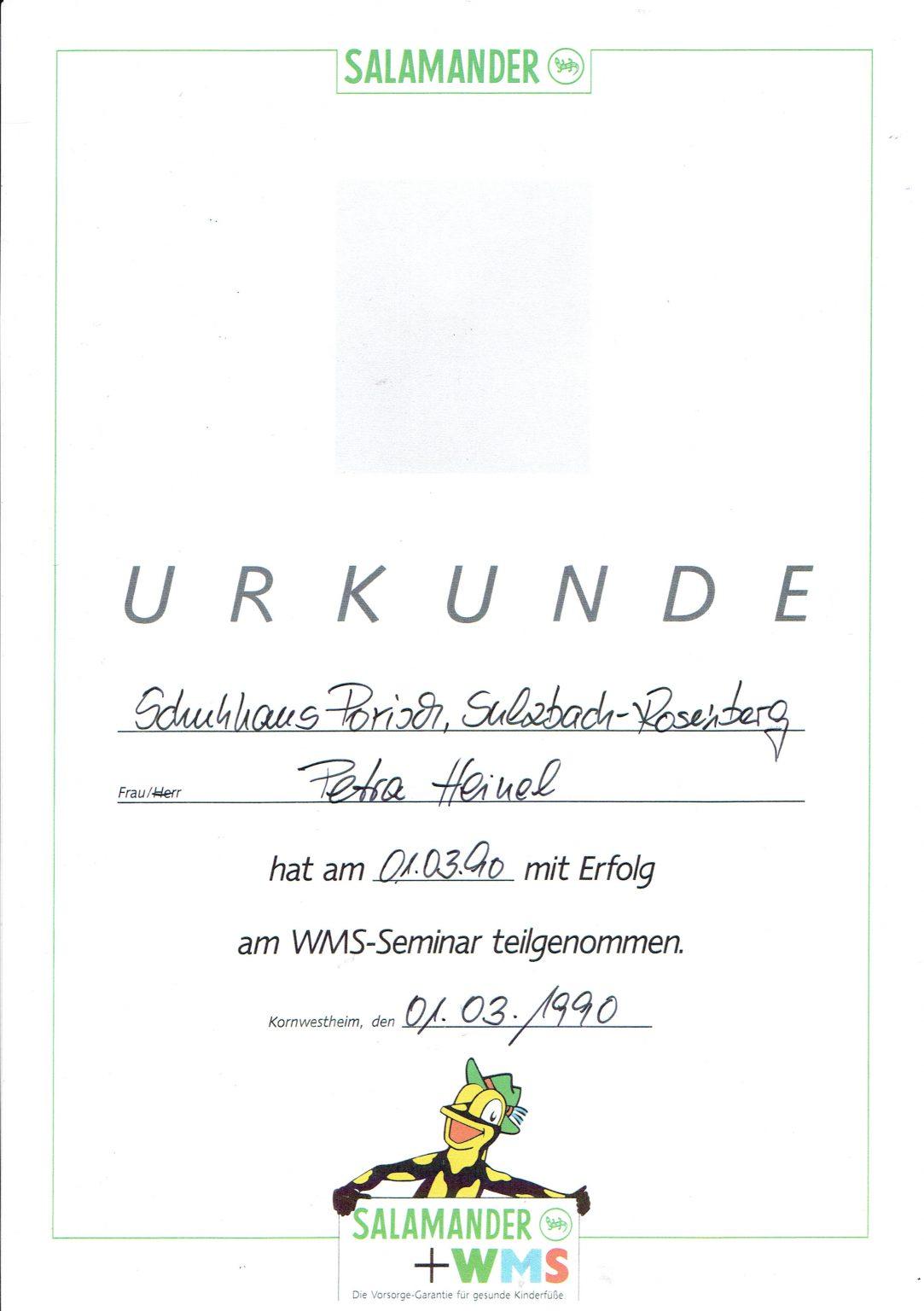 WMS Diplom Meyer