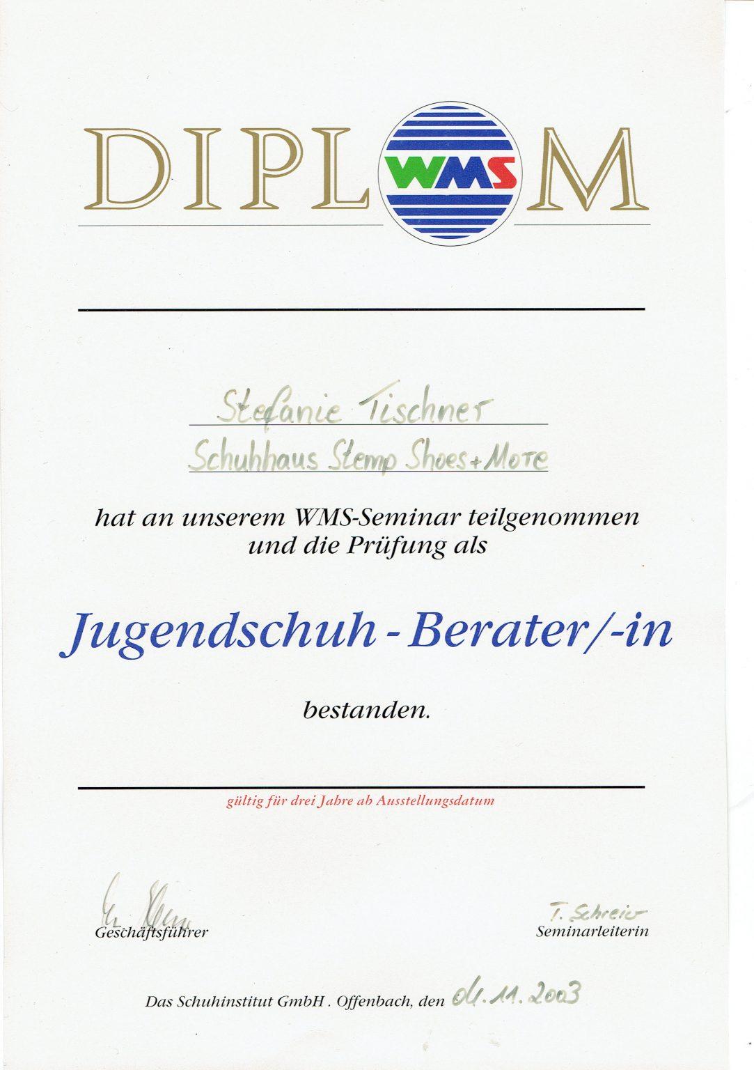 WMS Diplom Steffi
